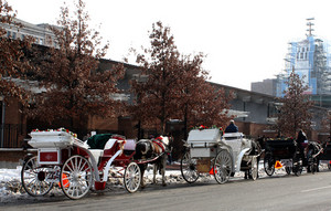 Philadelphia Carriages On Street