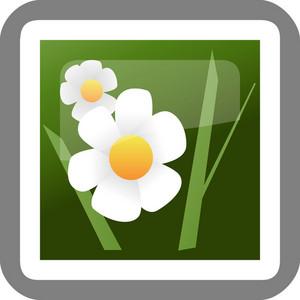 Photos Tiny App Icon