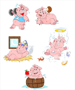 Pig Vector Illustrations
