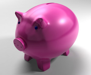 Piggy Bank Shows Savings Accounts