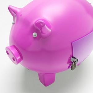 Piggybank With Closed Door Shows Secured Money