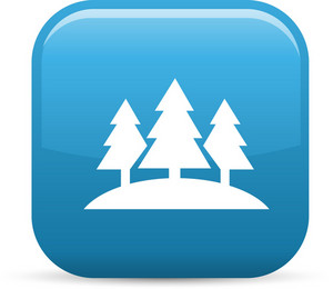 Pine Tree Forest Elements Glossy Icon