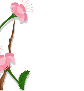 Pink Daisies Vector Banner Design