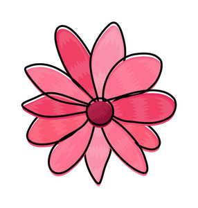 Pink Daisy Clipart