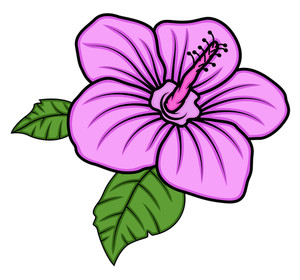 Pink Daisy Vector Art