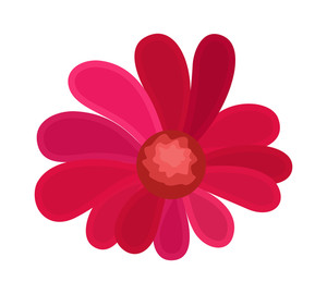 Pink Festive Flower