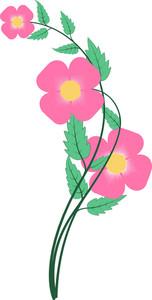 Pink Flower Elements