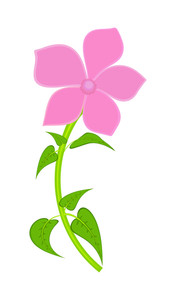 Pink Flower Shape
