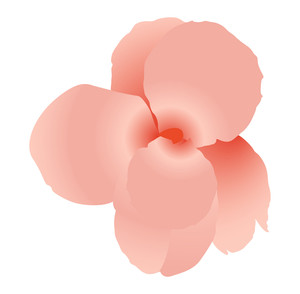 Pink Flower Vector Design