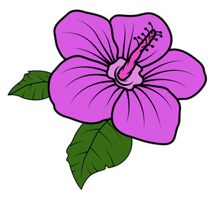 Pink Flower Vector Illustration