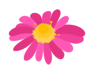 Pink Flower Vector Shape