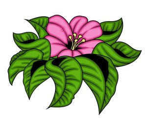 Pink Flower With Leaves Vector