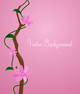 Pink Flowers Branch Vector Design