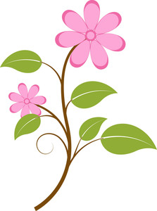 Pink Flowers Branch Vector