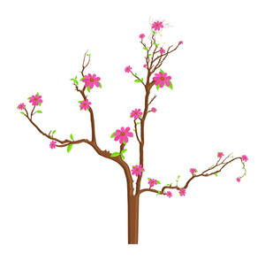 Pink Flowers Branches Illustration
