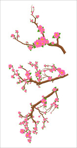 Pink Flowers Branches Set