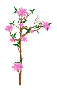 Pink Flowers Plant Illustration