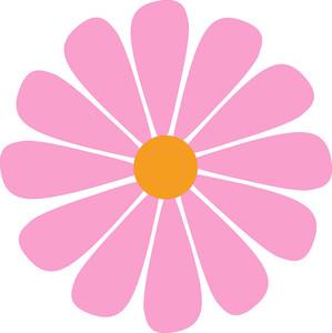 Pink Macro Flower