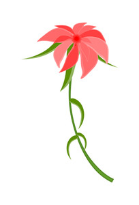 Pink Wildflower Vector