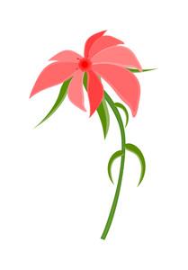 Pink Wildflower