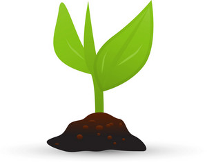 Plant Growth Lite Application Icon