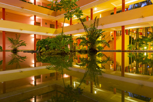 Plants reflected in a tropical hotel pool