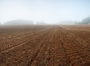 Plowed autumnal field landscape. Polish countryside