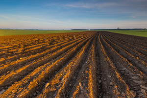 Plowed field landscape in calm polish countryside. Springtime landscape