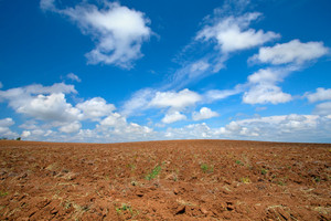 Plowed field with beautiful blue sky