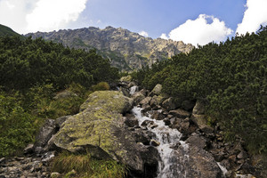 Polish High Tatras Mountain, Stream