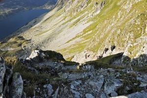 Polish High Tatras Mountains Heather On The Slopes