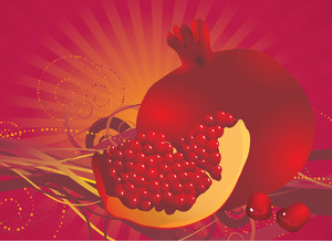 Pomegranates Fresh Vector Background.