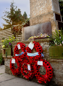 Poppies On A British War Memorial