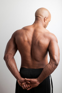 Portrait of a muscle fitness mans back and shoulders.