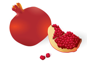 Ppomegranates. Vector.