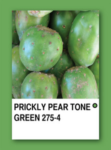 Prickly Pear Tone Green. Color Sample Design