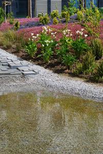 Private Condo Garden