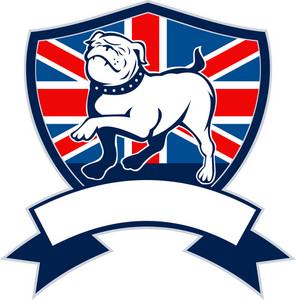 Proud English Bulldog British Flag Shield