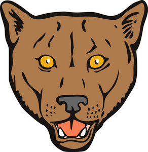 Puma Woodcut Retro