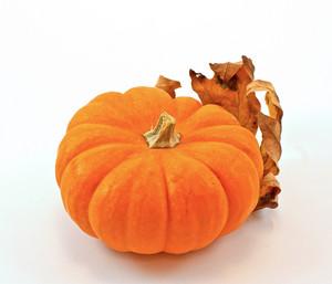 Pumpkin Autumn Leaf