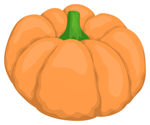 Pumpkin Vector Design
