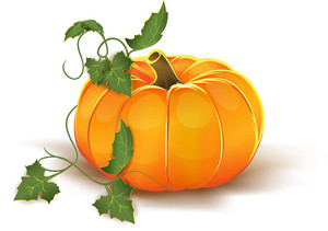 Pumpkin Vector Element