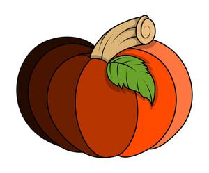 Pumpkin Vector Illustration