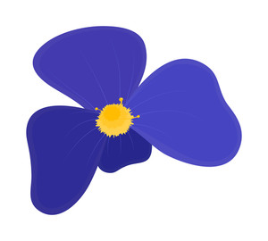 Purple Daisy Design