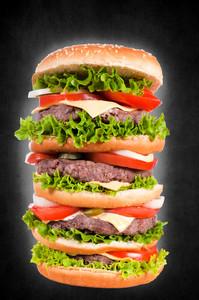 Quadruple Cheeseburger