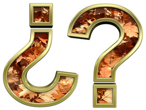 Question Mark From Autumn Gold Alphabet Set