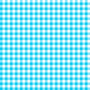 Blue And White Gingham Pattern