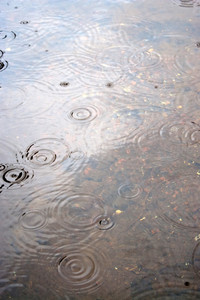 Raindrops falling from the sky create ripples in the water.
