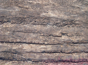 Raw_old_wood