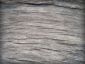 Raw_wood_texture